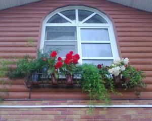 Северное окно.